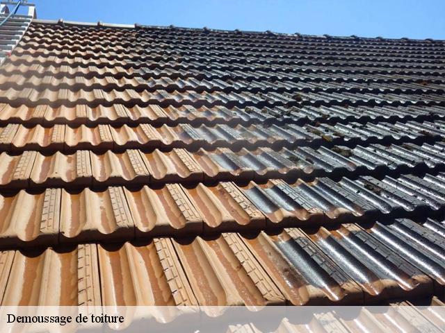 Demoussage de toiture à Marseille 11 13011 Tél: 04.82.29.39.74